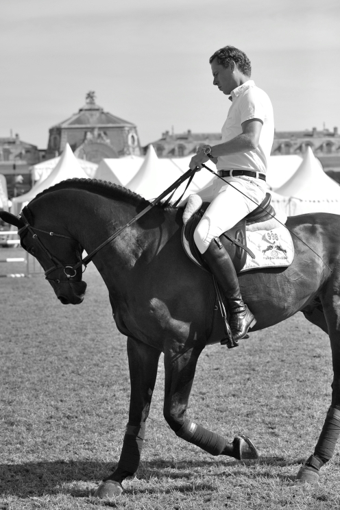 Christian and Codex One flatting in Chantilly. Christian is currently the world's leading ranked rider. It is really lovely to watch Christian flat his horses